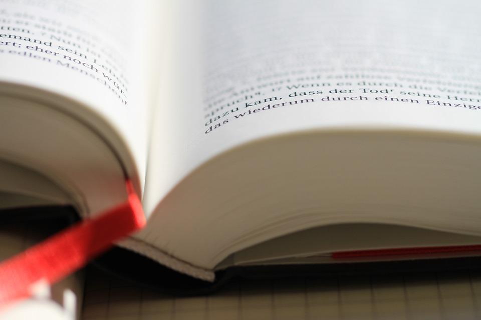 versos biblicos para que tus hijos aprecien la disciplina