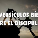 Siete versos bíblicos sobre la importancia del discipulado