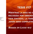95 tesis para la iglesia evangélica de hoy – Tesis número 17