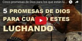 Cinco promesas de Dios para los que están luchando
