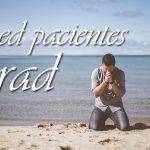 Sed pacientes y orad