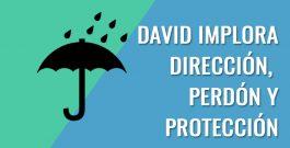 David implora dirección, perdón y protección