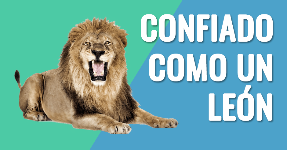 confiado como un leon 2