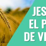 Jesús, el pan de vida