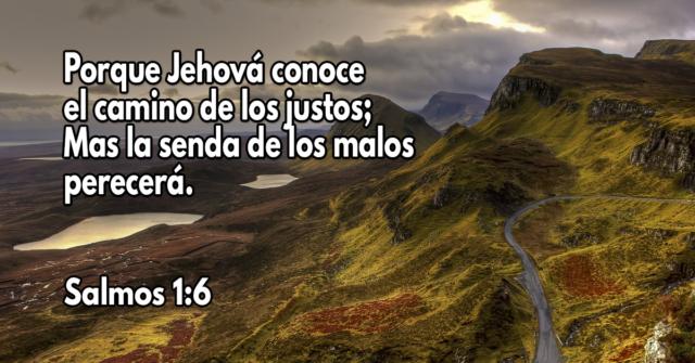 Porque Jehová conoce el camino de los justos; Mas la senda de los malos perecerá
