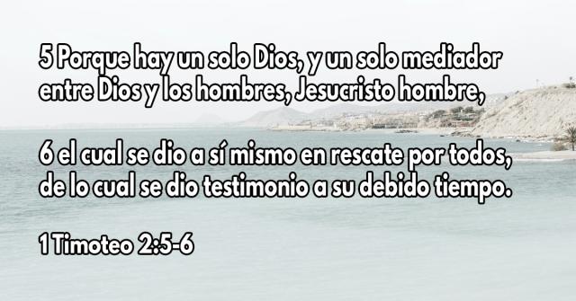 Porque hay un solo Dios, y un solo mediador entre Dios y los hombres, Jesucristo hombre