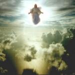 ¿Estará la iglesia en la gran tribulación?