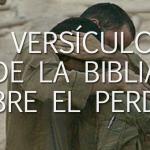 Ocho versículos de la Biblia sobre el perdón