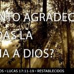 ¿Estás agradecido de Jesús? La historia de los diez leprosos