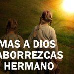 Si amas a Dios no aborrezcas a tu hermano
