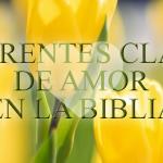 El amor en la Biblia: ¿Qué dice la Biblia sobre el amor?
