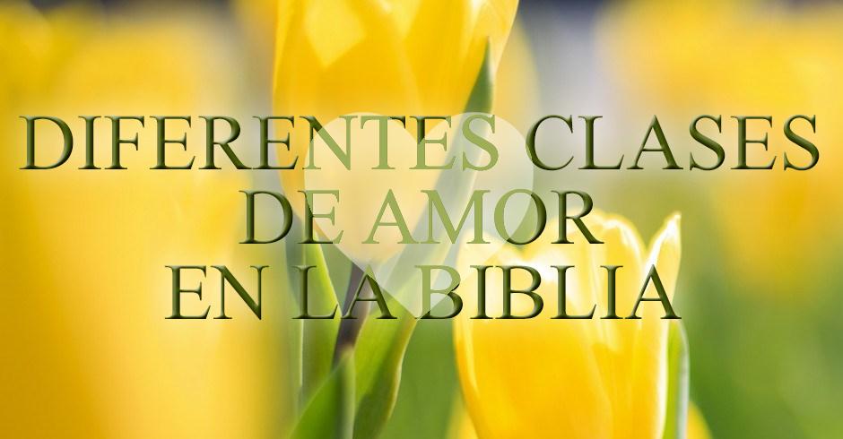 Que dice la Biblia sobre el amor