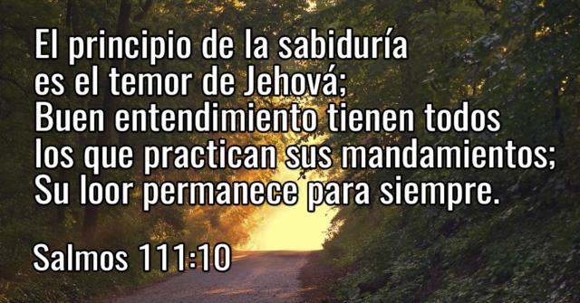 El principio de la sabiduría es el temor de Jehová; Buen entendimiento tienen todos los que practican sus mandamientos; Su loor permanece para siempre