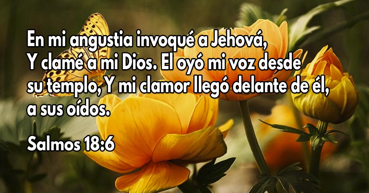 En mi angustia invoqué a Jehová,Y clamé a mi Dios. El oyó mi voz desde su templo, Y mi clamor llegó delante de él, a sus oídos