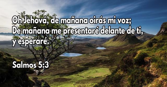 Oh Jehová, de mañana oirás mi voz; De mañana me presentaré delante de ti, y esperaré