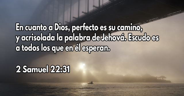En cuanto a Dios, perfecto es su camino, y acrisolada la palabra de Jehová. Escudo es a todos los que en él esperan