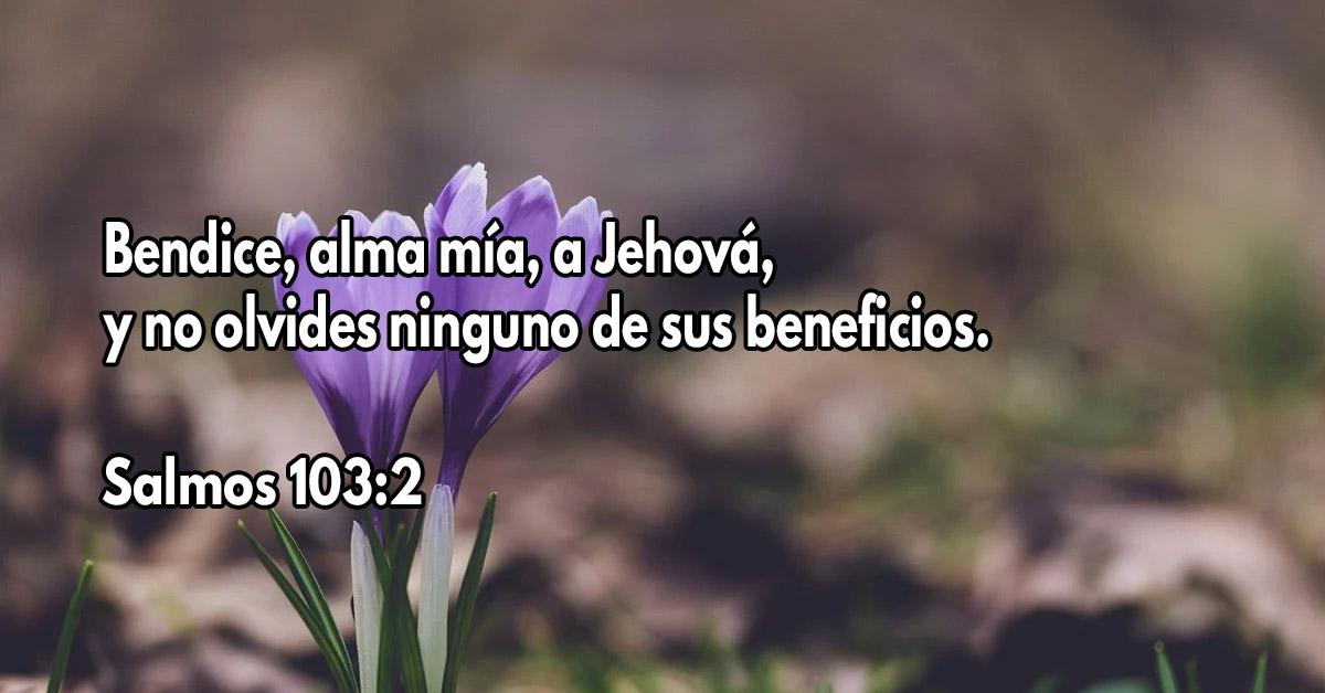 Bendice a Dios y no olvides Sus beneficios