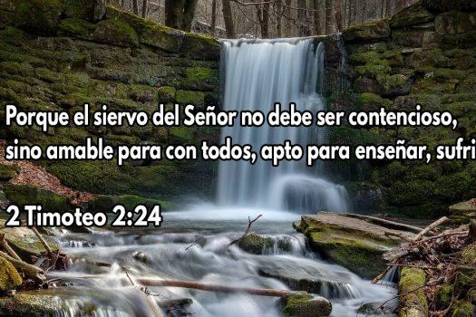 El siervo del Señor debe ser amable con todos
